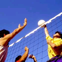 Where to find VOLLEY BALL SET in Elk River