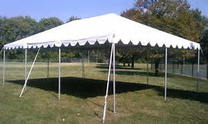 Where to find CANOPY 20X30 WHITE in Elk River