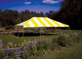 Where to rent CANOPY, 20X30 YELLOW   WHITE in Elk River MN