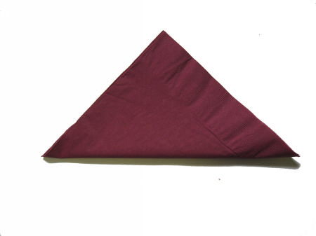 Where to find LINEN NAPKIN 20X20 BURGUNDY in Elk River